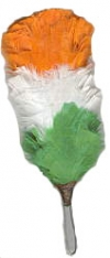 GPC-1074/A     Feather Plums, Irish Tri Color. 5 inches overall.